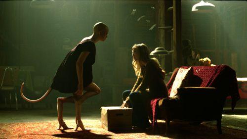 Clive (Adrien Brody) und Elsa nehmen Dren mit auf eine Farm (Foto: Senator / Central Films)