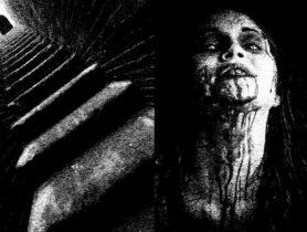 Evergreens, die schönsten Klischees aus Horrorfilmen