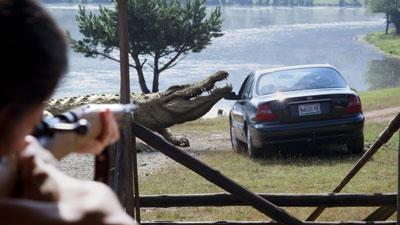 Kommt 'n Krokodil in 'ne Fahrschule... (Foto: Sony Pictures)