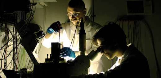 Experimente sind im vollem Gange (Foto: Instinctive Film / Ascot Elite)