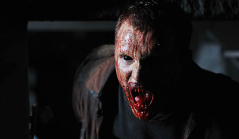 Vampir, kurz nach der Mahlzeit (Foto: Senator/Centralfilm)