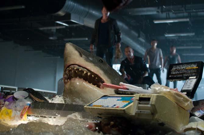 Dieser Hai hat einen Haken (Foto: Universum Film)