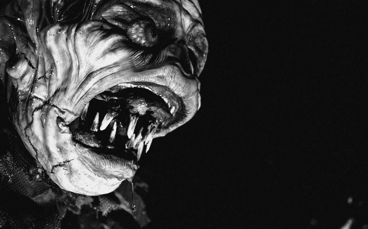 Der Beweis: Es gibt Monster (Foto: Tiberius Film)