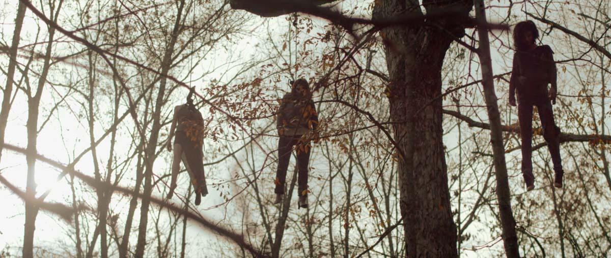 Einfach mal abhängen im Wald. Soll ja sehr gesund sein (Foto: Tiberius Film)
