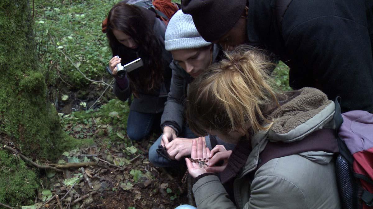 Schöne heile Welt: Der erste Geocaching-Schatz ist gefunden (Foto: Matador Film)