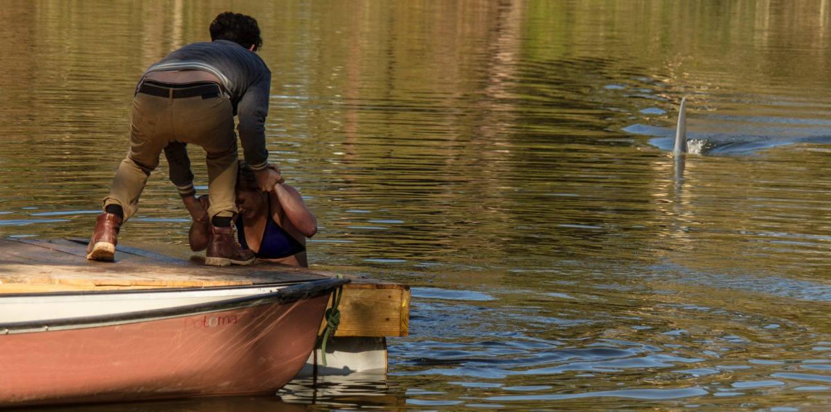 Harrison zieht die Karre aus dem Dreck, bevor der Hai kommt (Foto: Splendid Film)