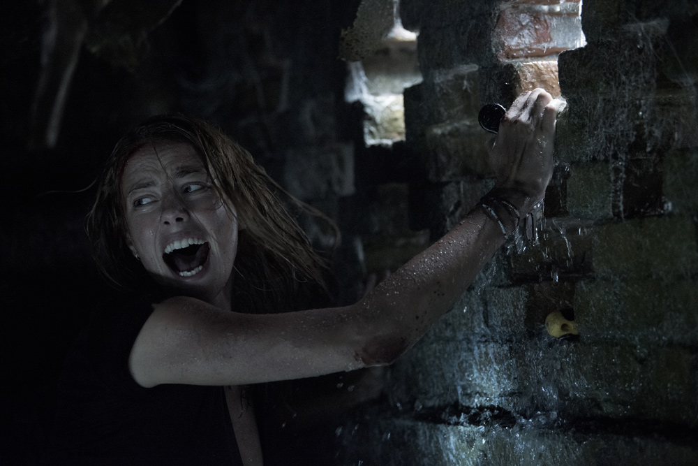 """Crawl"" ab 22. August 2019 im Kino"