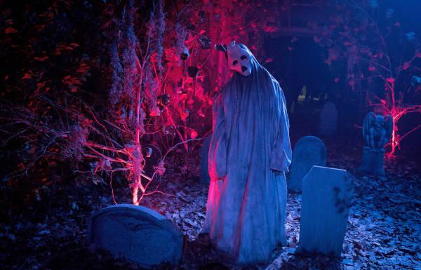 Ziemlich schräg: Der Maskenmann auf dem Pappmaschee-Friedhof (Foto: Splendid Film)